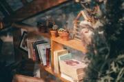 bookcase-books-bookshelf-2098691.jpg