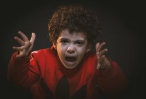 toddler-with-red-adidas-sweat-shirt-783941.jpg